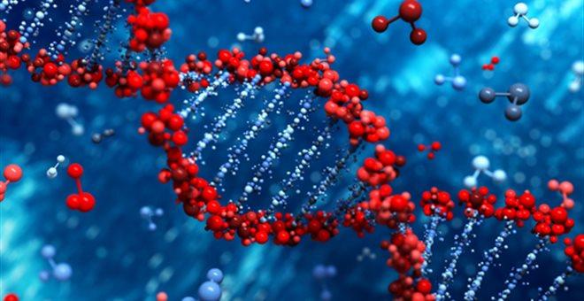 Γονίδια του αυτισμού υπάρχουν σε όλους μας