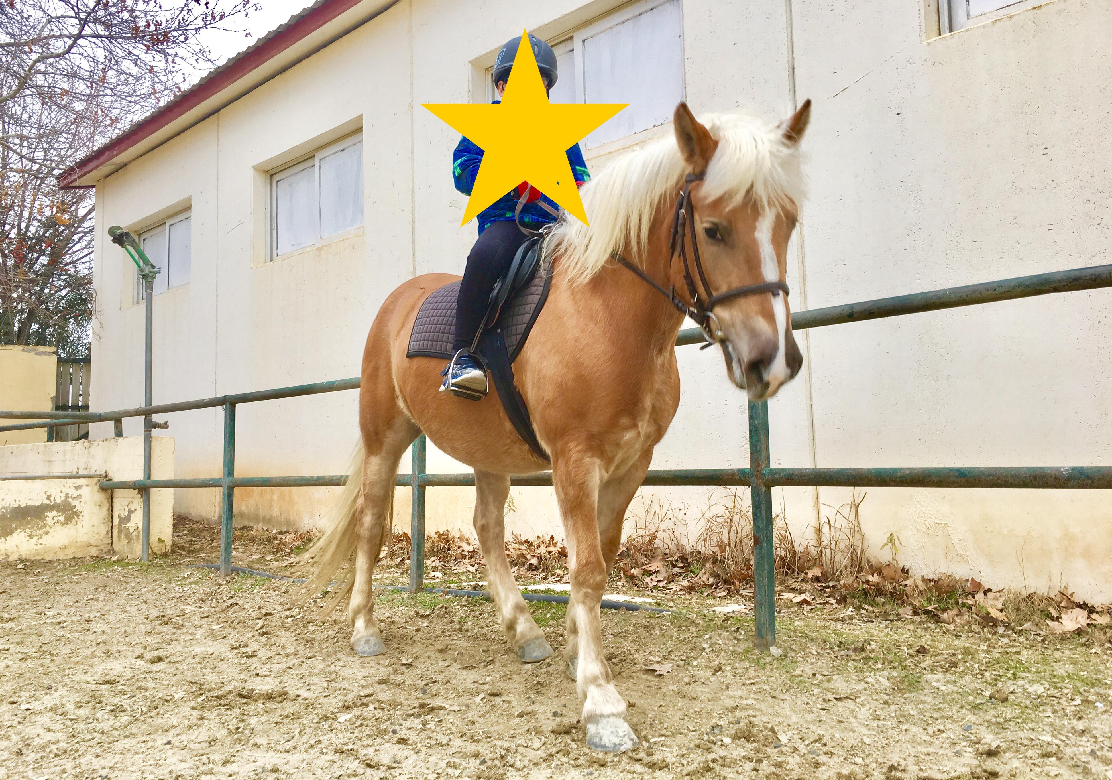 Η Ιππική δεξιοτεχνία κι η θέση της στην θεραπεία με άλογα.