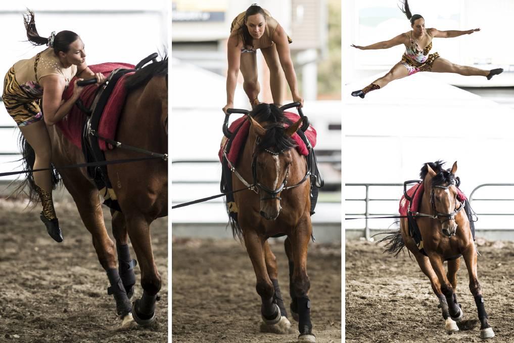 Ανθρώπινη πυραμίδα πάνω σε άλογο;!