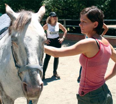 Άλογα βοηθούν φοιτητές ιατρικής με την συμπεριφορά προς τους ασθενείς