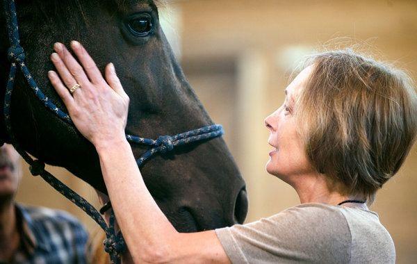 Θεραπεία με άλογα για άτομα με σκλήρυνση κατά πλάκας