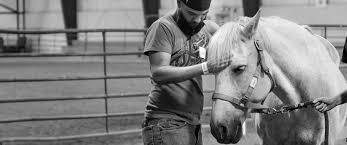 Πως η θεραπεία με τα άλογα  με βοήθησε με το άγχος μου.